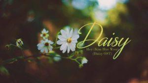daisy hoa cúc dại
