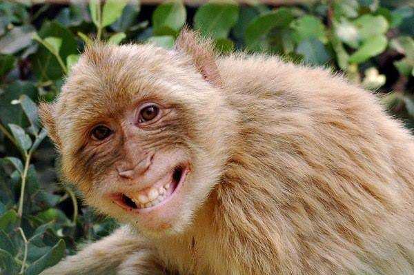 Nguyễn Minh Hùng cute nhất khi cười