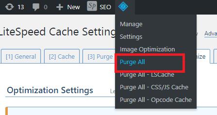 purge cache