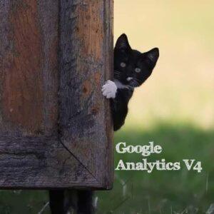 cách chèn Google Analytics v4 vào Wordpress